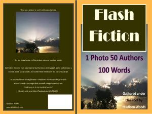Flash Fiction Anthology Cover