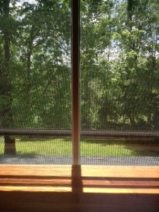 The view from the window of my room at The Porches.